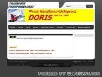 Doris -transport/przeprowadzki Poznań